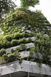 Construyendo la casa bioclimática: Jardín vertical en vertical garden in barcelona