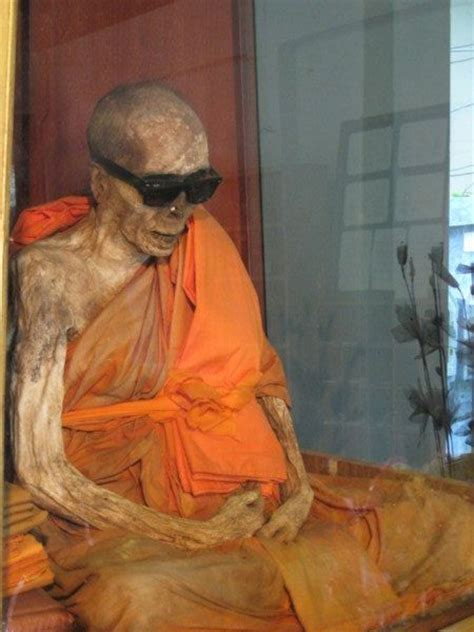 mummified monk check   sunglasses photo