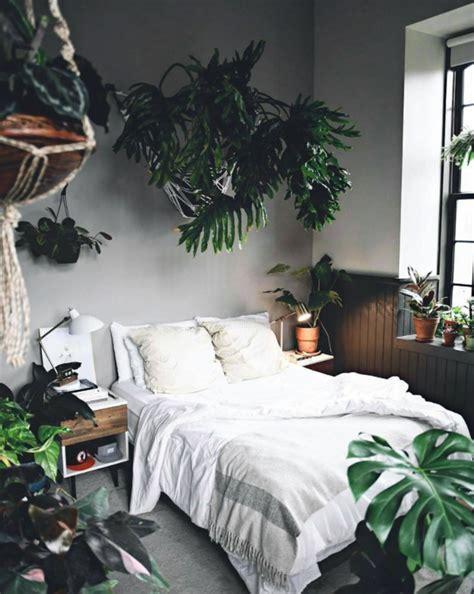 garden instagrams plant photography accounts