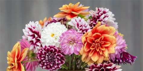 mothers day flower delivery services
