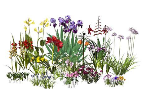 bulb plants plants bulbs catalog details
