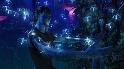 Lu Jamur Avatar Edition torrent software torren avatar