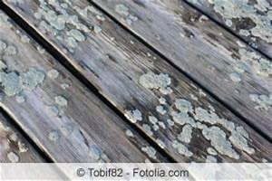 Moos Entfernen Terrasse : moos von terrasse entfernen terrassenplatten co ~ Michelbontemps.com Haus und Dekorationen