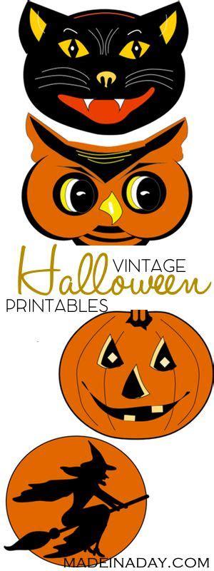 leopard print pumpkins clipart clipground