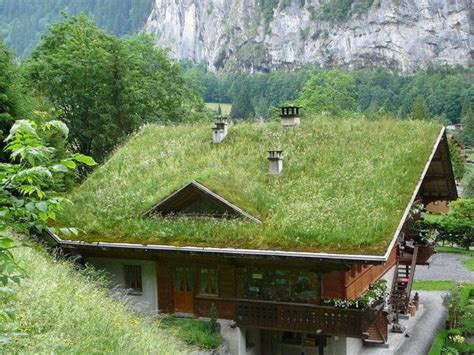 Haus Mit Grasdach by Lauterbrunnen Grass Roof House Homes Out Of The