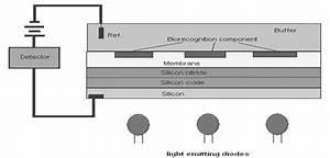 Figure 11  Block Diagram Of The Light Addressable Potentiometric Sensor With Biorecognition