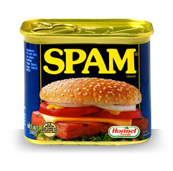 what is spam homemade spam recipe what why and how cupcake project