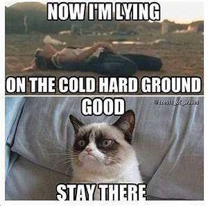 30+ Most Funny Grumpy Cat Pictures And Memes ...