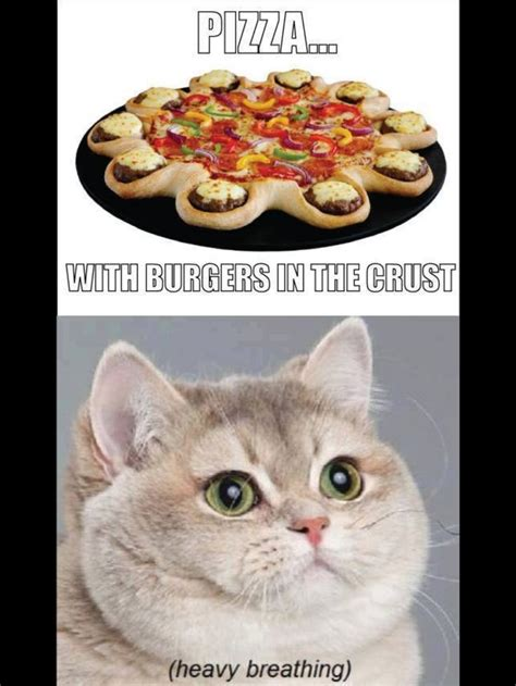 Heavy Breathing Meme - 14 best images about nomnomnom on pinterest cats story of my life and funny posts