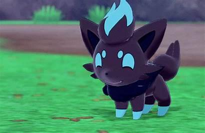 Pokemon Shiny Sword Zorua Shield Reblog