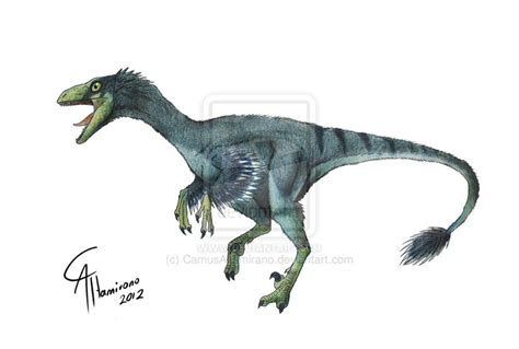 troodon pictures facts dinosaur