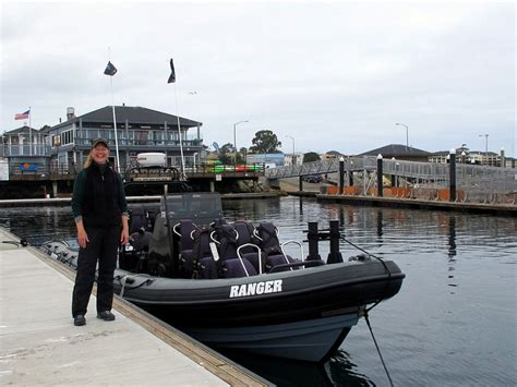 Fast Boat Whale Watching Monterey by 30 Things To Do In Monterey Bay Area