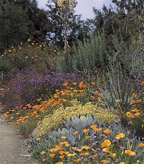 Native Plants In Landscape Management Heaviland