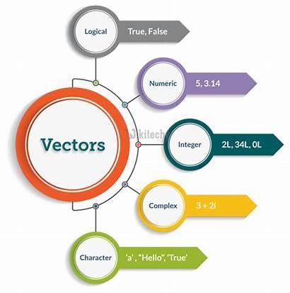 Vectors Programming Data Type Infographic Vector Template