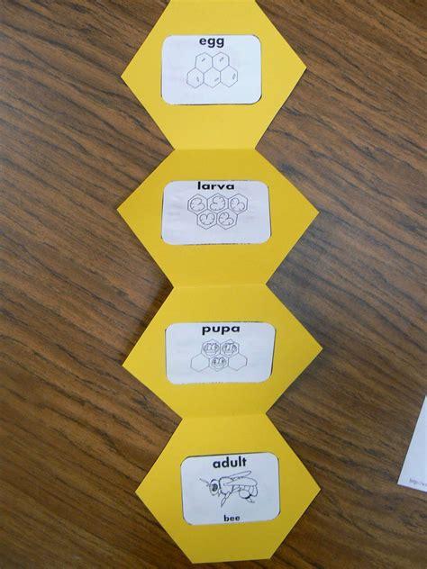honeycombhexagon bee shape book
