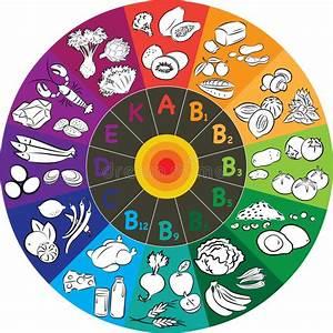 Circle K Stock Chart Vitamin Wheel Stock Vector Illustration Of Energy