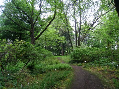 Botanischer Garten Berlin Arboretum by Botanik In Berlin Und Brandenburg