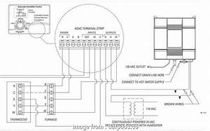 Nest Wiring Diagram  Humidifier Brilliant Nest Humidifier