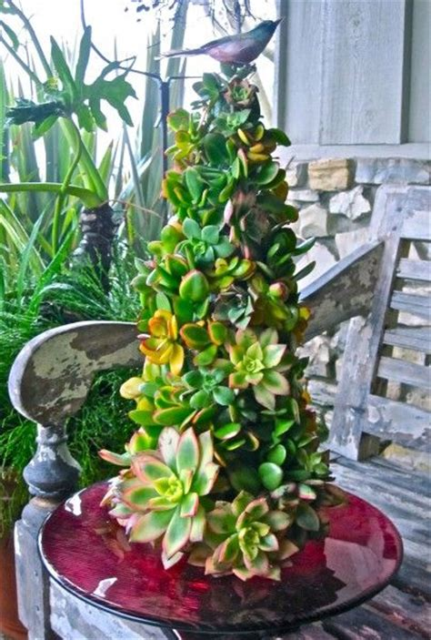 how to dismantle a christmas tree succulents topiaries and trees on