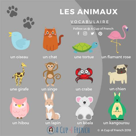 Animals French words 1 | French vocabulary, French ...