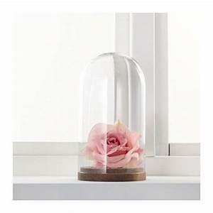 Glasglocke Mit Teller : h rliga glasglocke mit teller klarglas living pinterest glas glasglocke and ikea ~ Orissabook.com Haus und Dekorationen