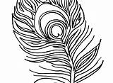 Peacock Coloring Feather Drawing Clipartmag Pages Printable Colouring Getcolorings sketch template