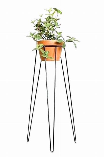 Plant Tall Stands Stand Indoor Garden