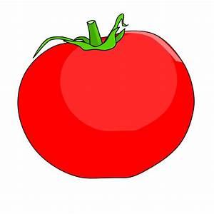 Tomato clipart cartoon - Pencil and in color tomato ...