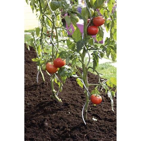 tuteur tomate spirale nortene h 1 80 m leroy merlin
