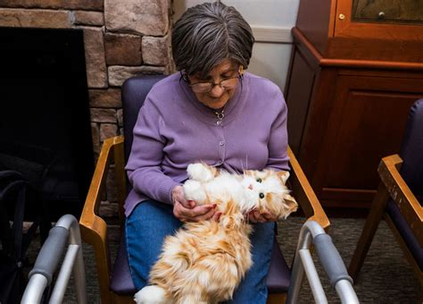 therapy cats  dementia patients batteries included