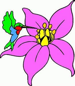 Hummingbird Clipart Free - ClipArt Best