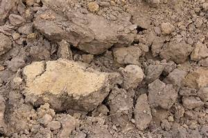 What is Clay Loam? (with picture)