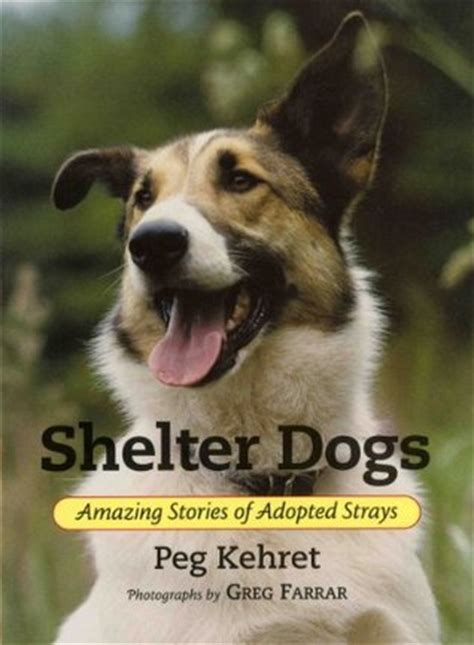shelter dogs amazing stories  adopted strays  peg