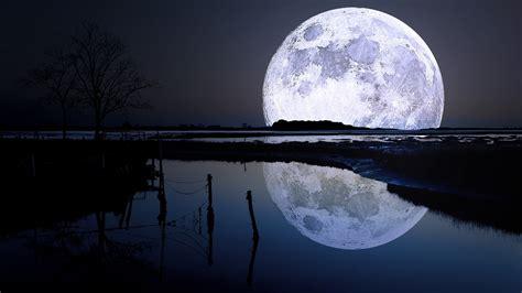 Landscape, Lake, Trees, Night, Moon, Moonlight, Nature