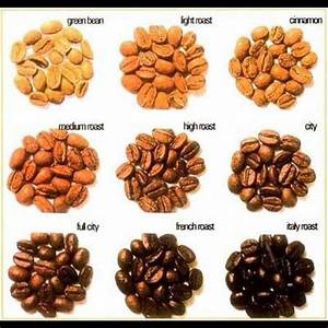 Different types of coffee beans Coffee Pinterest