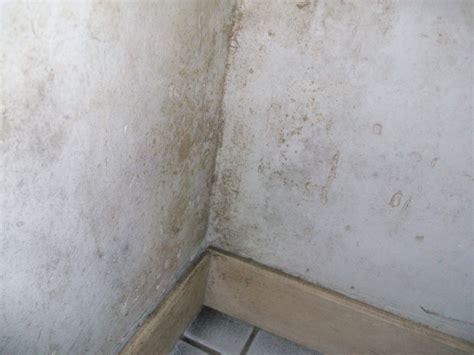 probleme moisissure chambre beurk de la moisissure partout gros probleme d 39 humdité