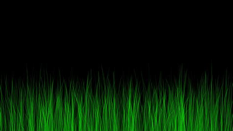 Simulated Grass Growing On Black Background. Animation
