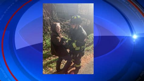 Cat saved from tree in Clay County