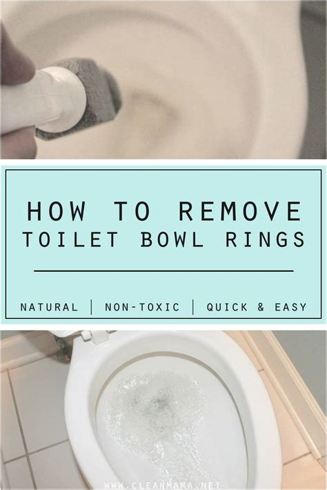 water ring toilet bowl 25 best ideas about toilet bowl ring on pinterest hard