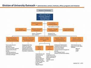 University Outreach Organizational Chart By Auburn