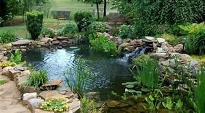 Fabriquer Une Fontaine Sans Pompe : bassin aquatique de jardin tapes de construction et photos ~ Melissatoandfro.com Idées de Décoration