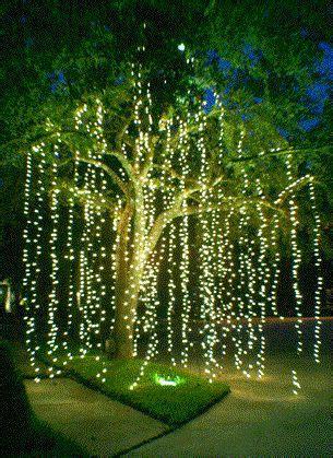 outdoor wedding lighting idea hang strands  tree