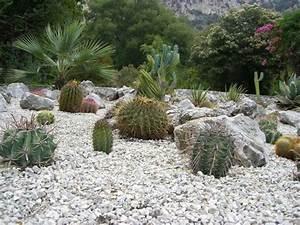 Plantes Pour Jardin Japonais Exterieur : jardin sur gravier conseils d 39 entretien ~ Premium-room.com Idées de Décoration