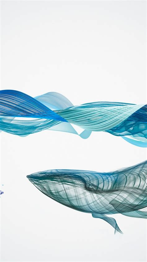 wallpaper whale waves underwater artwork  animals