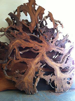 root slice  wall art wood resin wood art wood lumber