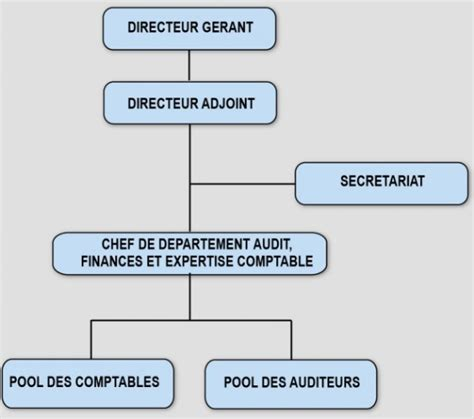 cabinet d audit et d expertise comptable organigramme fonctionnel afric auditec cabinet d audit et d expertise comptable