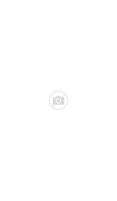 Bergamot Bergamet Citrus Mega Bottles Superfruit Cholesterol