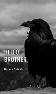 Damon Salvatore | Vampire diaries funny, Vampire diaries ...
