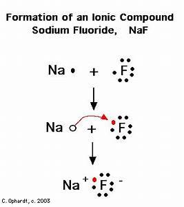 Bohr Diagram For Sodium Bohr Free Engine Image For User
