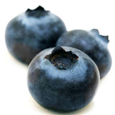 blauwe bessen assortiment special fruit